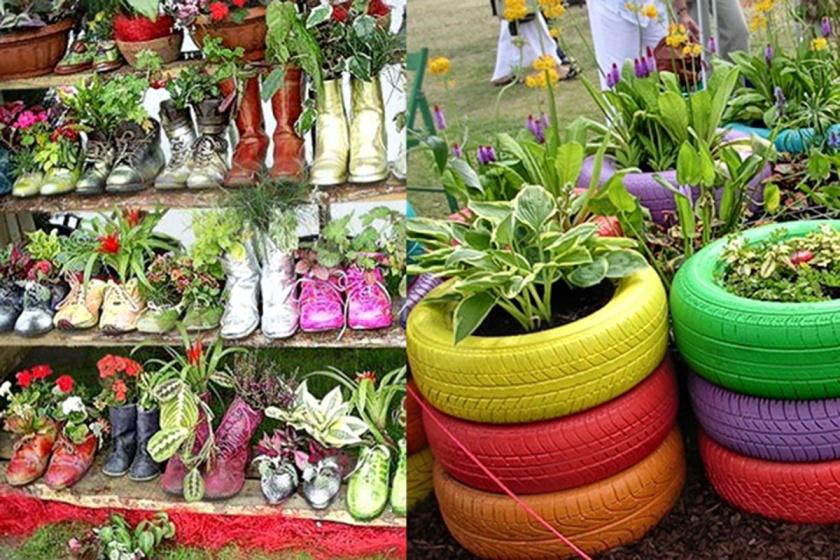 by ecologismos.com