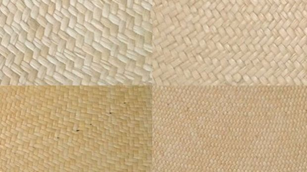 En esta imagen se puede apreciar la diferencia de la finura de la paja en distintos tejidos (sitio web de Brent Black)
